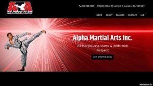 Langley Martial Arts